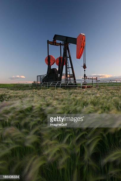 Red Pumpjack in Alberta Crude Oil Field