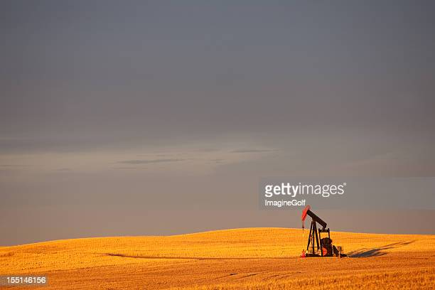 Red Pumpjack in an Oil Field In Alberta Canada