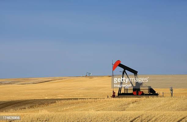 Red Pumpjack on Oilfield in Texas