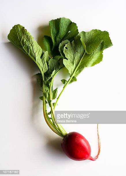 Red Radish with Leaves on white background