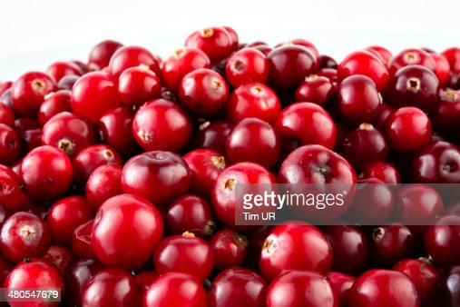 Red ripe cranberries : Stock Photo