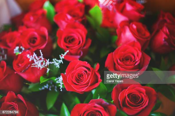 red rose bouquet seeing from above