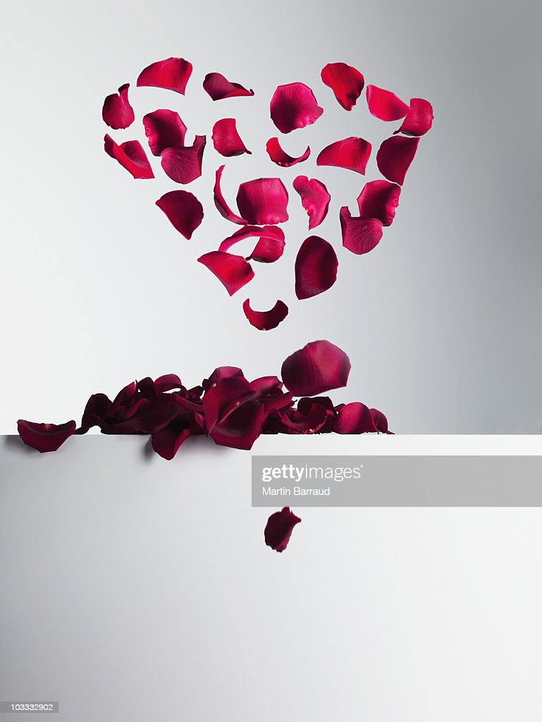 Red rose petals forming heart-shape