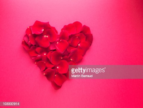 Red rose petals forming heart-shape : Stock Photo