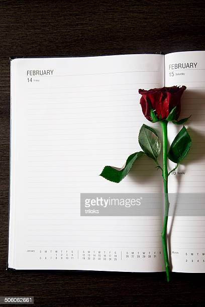 Rote Rose auf Tagebuch