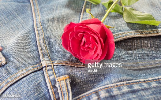 Red rose with dark blue jeans texture : Stock Photo