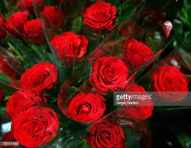 Red roses are seen on display at a florist on Valentine's Day February 14 2008 in Sydney Australia The day is named after two of 11 officially...