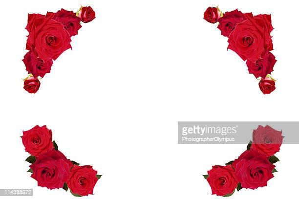 Red roses border/frame XXXL