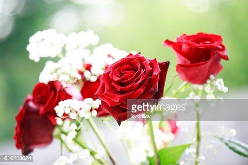 Rote Rosen Bouquet : Stock-Foto