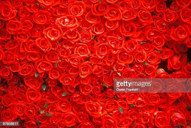 red roses for sale in a market