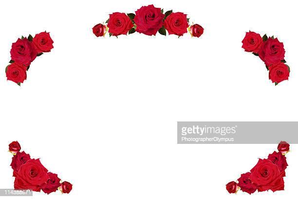 Red roses frame /border XXXL+