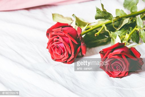 Red roses on bed background : Stockfoto