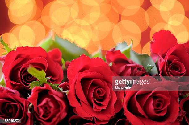 Rote Rosen auf beleuchteten Hintergrund