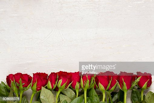 Red roses on white background.Valentines Day background.Happy mother's day. : Stock Photo