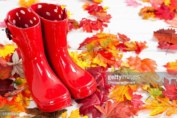 Red rubber boots on autumn leaves