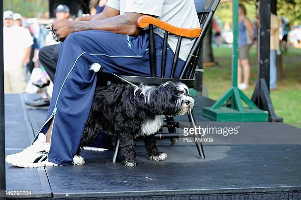 Red Sox' David Ortiz family dog Happy attends the official Wellesley start for the 33rd annual PanMassachusetts Challenge at Babson College on August...