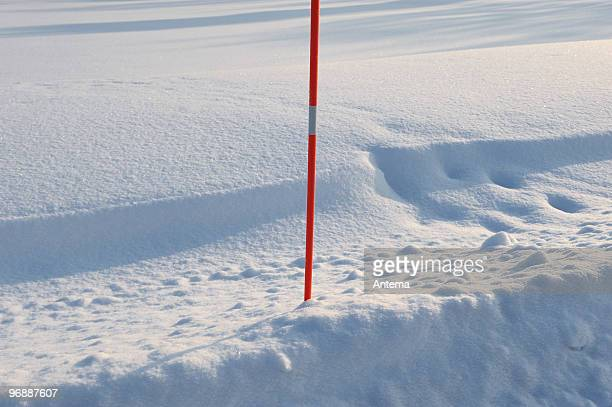 Bâton Rouge dans la neige