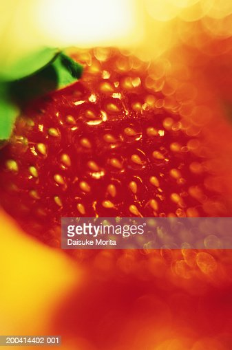Red strawberry, close-up (focus on strawberry) : Stock Photo