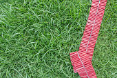 Red string of Firecrackers on the green lawn