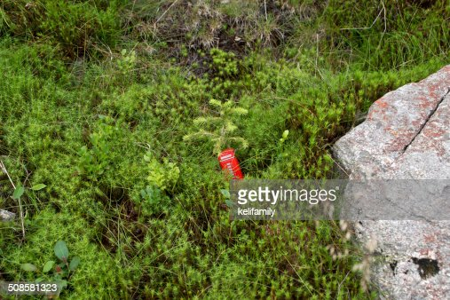 Red telephone box in the moss : Stockfoto