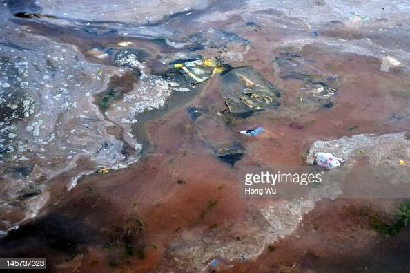 Red tide and garbage pollution are seen on the sea on May 21 2012 in Qingdao China Marine fishery resources in China becomes less and lees due to...
