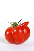 Isolated deformed red tomato on a white back drop.