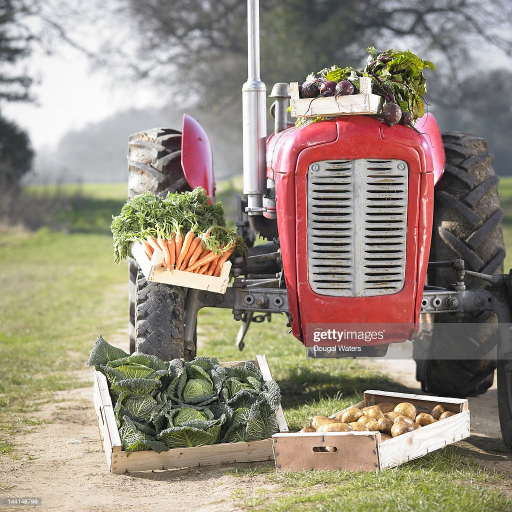 Red tractor in countryside with fresh vegetables. : Stock Photo