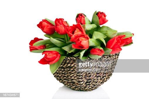 Tulipanes rojos en la cesta : Foto de stock