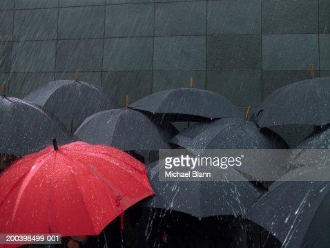 Red umbrella amongst group of open umbrellas in rain
