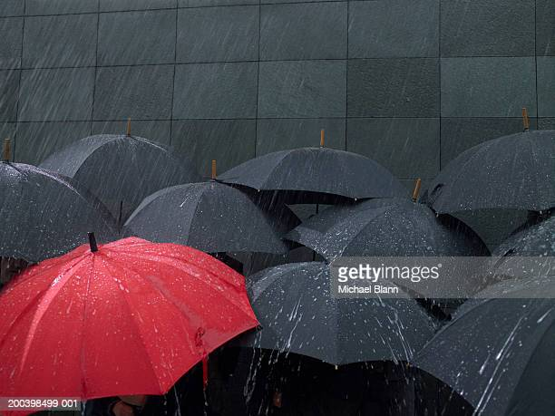 Red umbrella amongst group of open umbrellas in rain