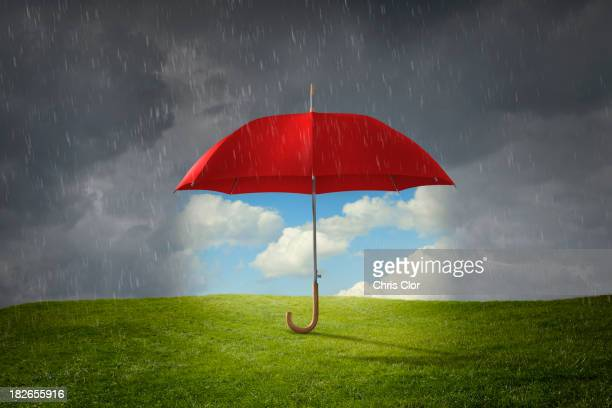 Red umbrella protecting grass from rain