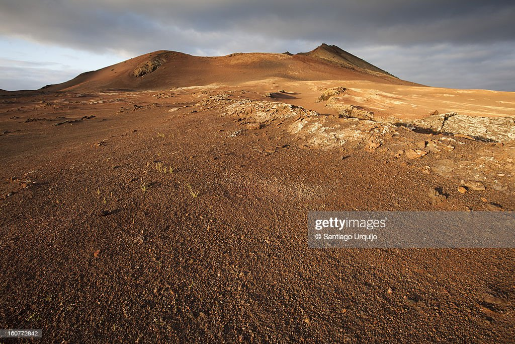 Red volcano in Timanfaya National Park : Stock Photo