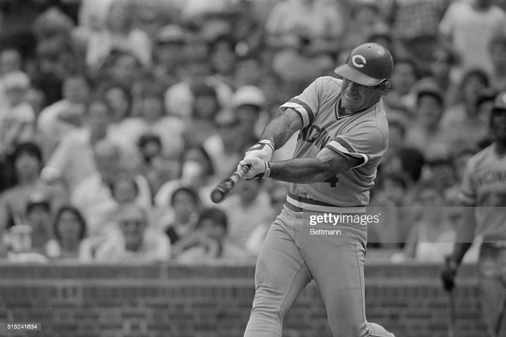 Reds' Pete Rose singles off Cubs' Reggie Patterson in the 5th inning to tie Ty Cobb's career record of 4191 Ball is at left