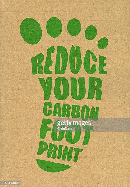 carbon emissions and socioeconomic issues essay Business, ethics, and global climate change uploaded by  with the purpose of assessing the available scientific and socioeconomic  the carbon emissions from.
