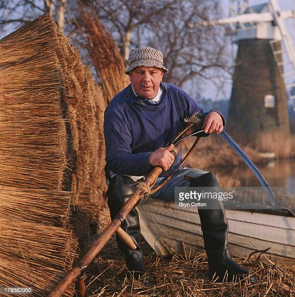 Reed Cutter and marshman Eric Edwards MBE sits holding a traditional scythe as he poses for a photograph amongst freshly cut and bundled reed on the...