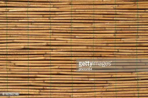Reed sticks background : Foto de stock