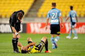 Referee Chris Beath checks on Leo Bertos of the Phoenix after going down in a heavy tackle during the ALeague Elimination Final match between the...
