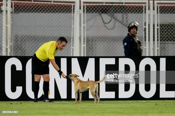 Referee Cristian Navarro of Argentina pets a dog during the Copa Libertadores football match between Venezuela's Zamora and Brazil's Gremio at the...