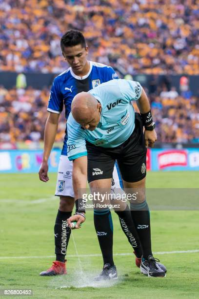 Referee Francisco Chacon marks a line on the pitch with spray foam during the 3rd round match between Tigres UANL and Puebla as part of the Torneo...