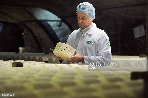 A refiner controls the quality of Roquefort cheeses on January 16 2009 in a cellar at RoquefortsurSoulzon southern France French government and food...