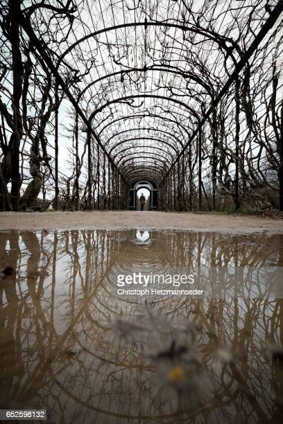 Reflected arch walkway