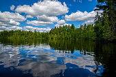 reflecting clouds and forest on the placid waters of sawbill lake, in the boundary waters conoe area wilderness, minnesota.