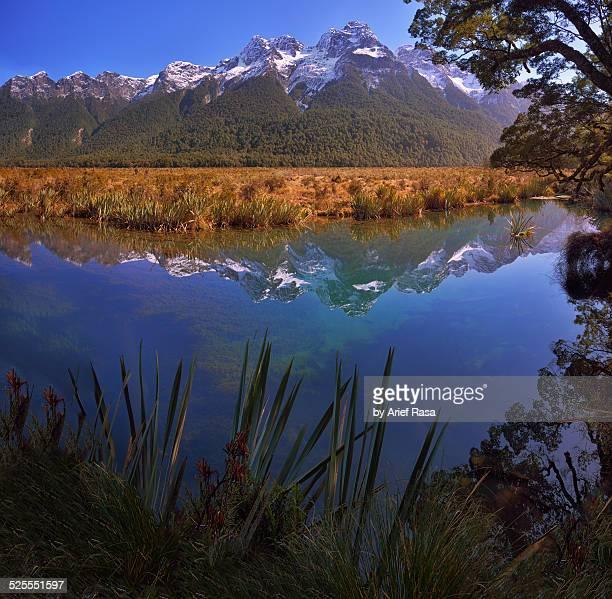 Reflection at Mirror Lake