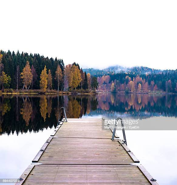 Reflection Of Autumn Trees And Clear Sky On Calm Lake