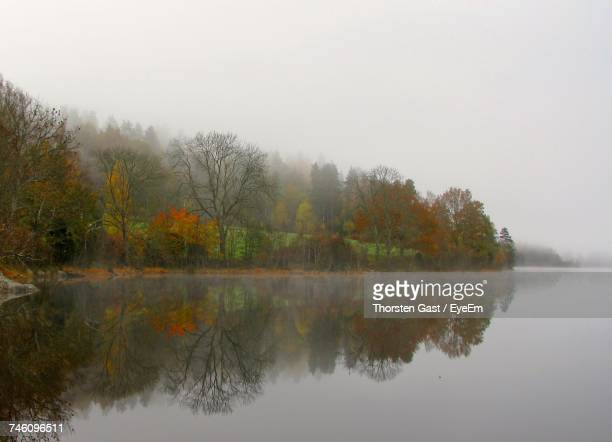 Reflection Of Autumn Trees In Calm Lake