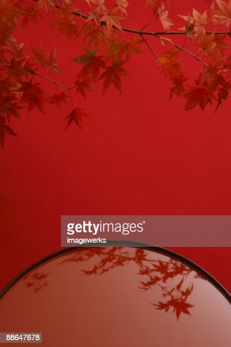 Reflection of maple leaf against red background, close-up