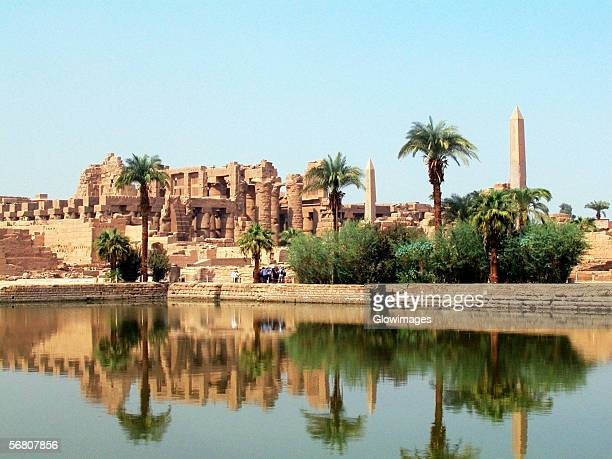 Reflection of trees and temple in water, Temples Of Karnak, Luxor, Egypt