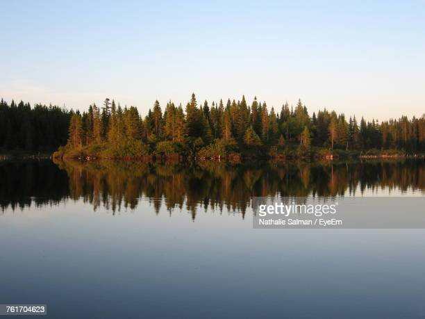 Reflection Of Trees In Lake At Sunset