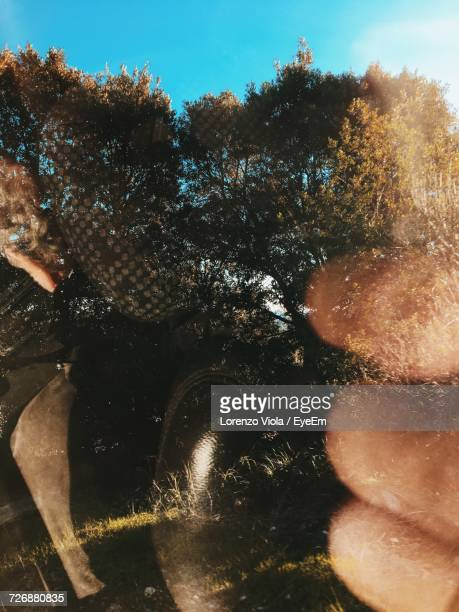 Reflection Of Trees On Car Window