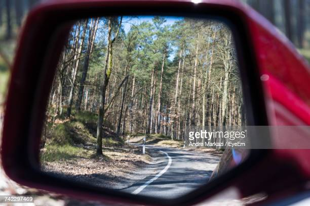 Reflection Of Trees On Side-View Mirror